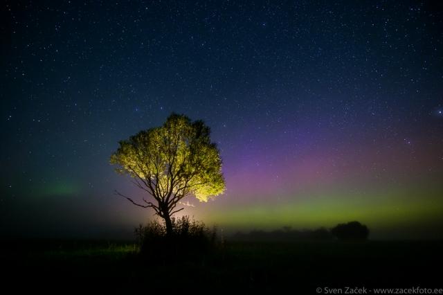© Sven Začek - segataud valgused. Öine taevas virmalistega ja kontravälk. Nikon D810A + Nikkor 14-24mm F2,8 @ 14mm + Nikon SB-910 välklamp. F2,8, 20s, ISO 4000.