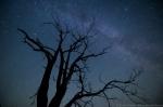 © Sven Začek - digiajastu tõi fotograafiasse tähtede pildistamise ilma maakera pööremise jäädvustumiseta. Nikon D810A + Nikkor 14-24mm F2,8. F2,8, 20s, ISO 4000.
