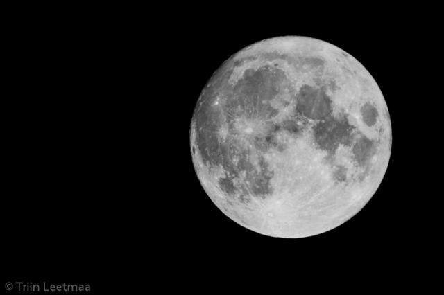© Triin Leetmaa -  Зрительная труба пригодится не только для наблюдения за птицами. Следующий раз увидеть полную луну на Рождество можно будет лишь в 2034 году.